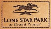 Lone Star A Shining Example Of Digital Success…