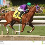 Can California Chrome Help Racing Strike Gold?