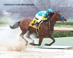 Can A Pharoah Lead Horse Racing To Brand Gold?