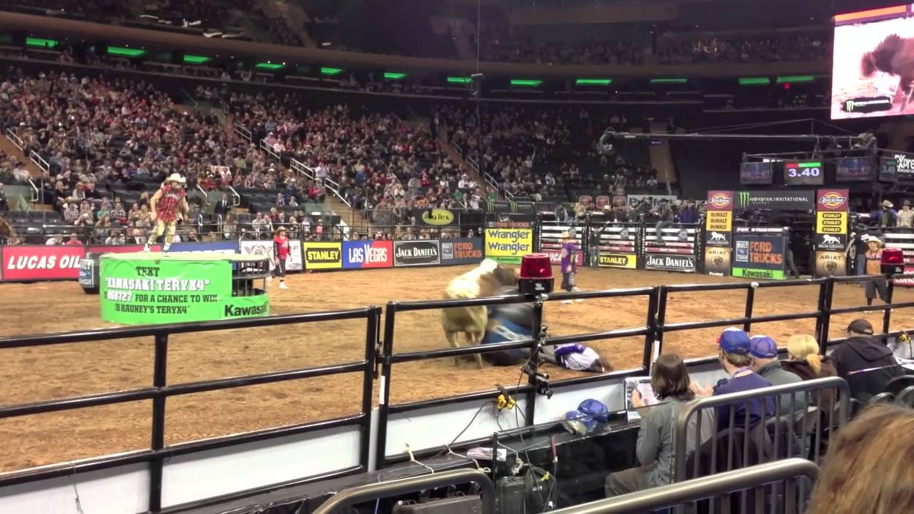 Grabbing The Moment: PBR And New York's Charging Bull